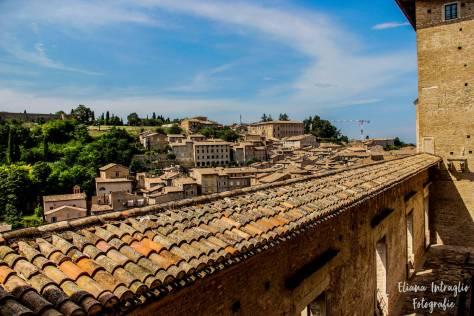 Urbino_10)