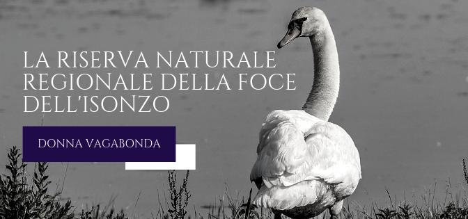 Le meraviglie della natura: La Riserva Naturale Regionale della Foce dell'Isonzo – Isola della Cona